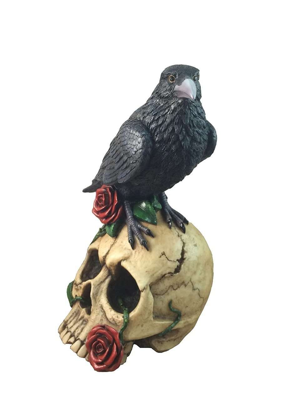 Bird Raven On Skull Animal Prop Life Size Resin Statue - LM Treasures