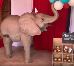 Standing Baby Elephant Life Size Statue - LM Treasures