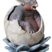 Triceratops Dinosaur Hatching Life Size Statue - LM Treasures