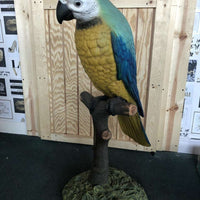 Blue Parrot On Branch Life Size Statue - LM Treasures