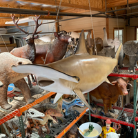 Life Size Hammer Head Shark Statue With Real Teet | LM Treasures
