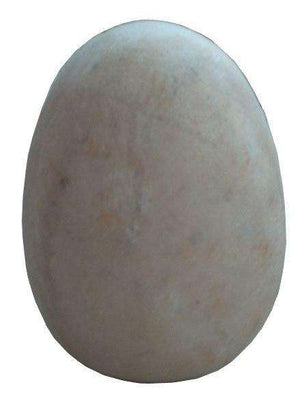 Dinosaur Fossil Egg Large Prehistoric Prop Resin Statue - LM Treasures Life Size Statues & Prop Rental