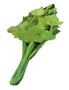 Vegetable Celery Over Sized Restaurant Prop Resin Statue - LM Treasures Life Size Statues & Prop Rental