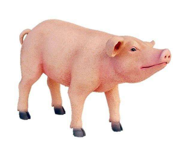 Pig Baby # 1 Standing Farm Prop Life Size Decor Resin Statue- LM Treasures
