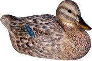 Bird Duck Mallard Female Animal Prop Life Size Resin Statue- LM Treasures