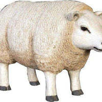 Sheep Ewe Texelaar Baby Head Up Farm Prop Resin Decor Statue - LM Treasures Life Size Statues & Prop Rental