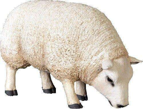 Texelaar Sheep Head Down Life Size Statue - LM Treasures