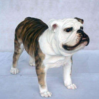 Dog Bulldog Brown Animal Prop Life Size Décor  Resin Statue