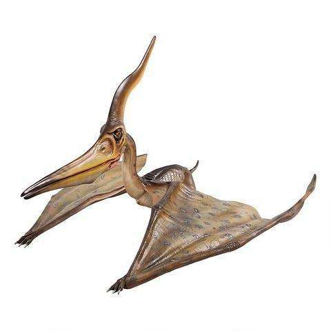 Pteranodon Ingens Dinosaur Life Size Statue - LM Treasures Life Size Statues & Prop Rental