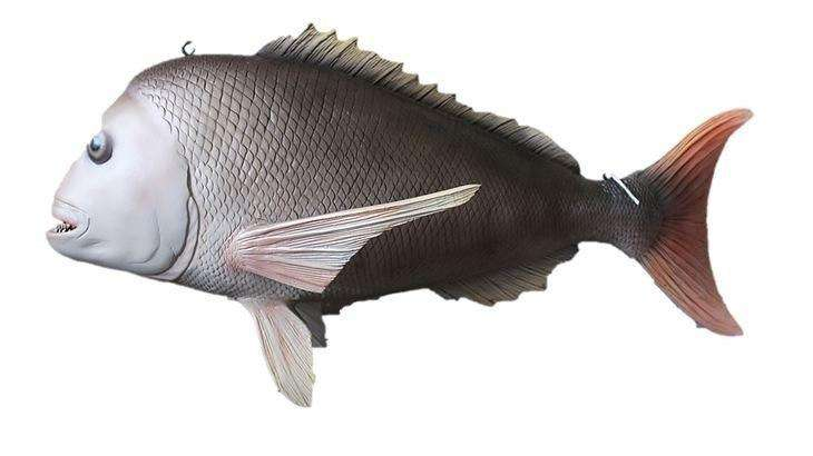Fish Snapper Hanging Sea Prop Resin Decor Statue- LM Treasures