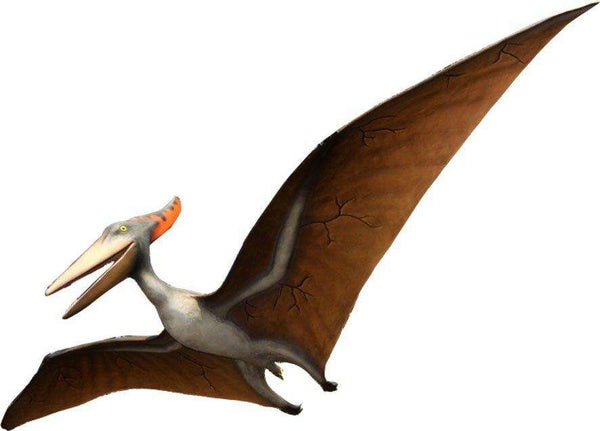 Pteranodon Dinosaur Life Size Statue - LM Treasures Life Size Statues & Prop Rental