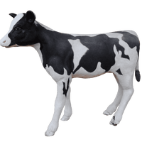 Large Baby Holstein Cow Life Size Statue - LM Treasures Life Size Statues & Prop Rental