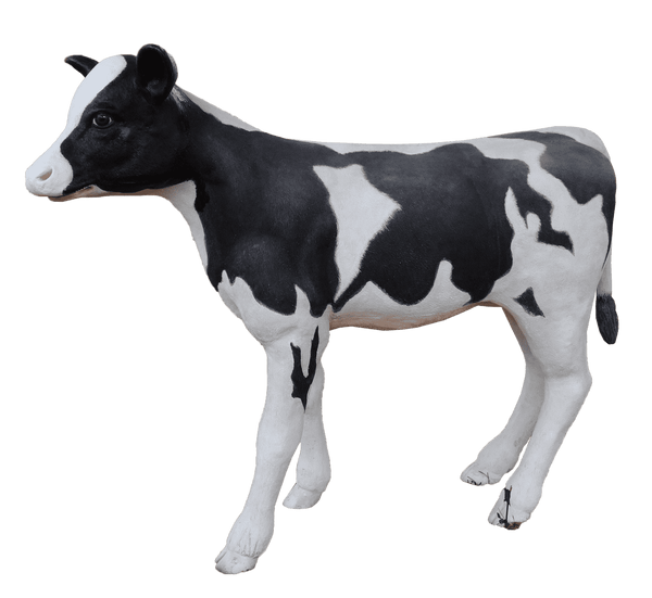 Large Baby Holstein Cow Life Size Statue - LM Treasures