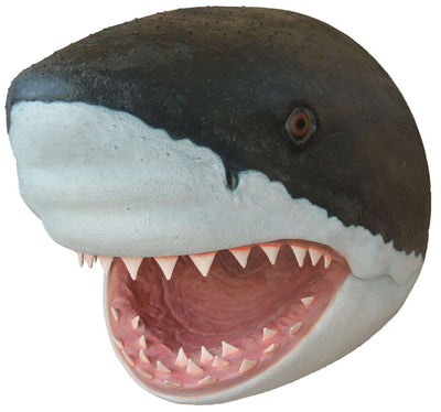 Shark Great White Head # 1 Wall Decor Sea Prop Resin Statue- LM Treasures