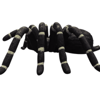 Tarantula Spider Insect Over Sized Statue - LM Treasures Life Size Statues & Prop Rental