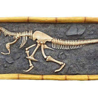T-Rex Dinosaur Skeleton Wall Decor Life Size Statue - LM Treasures Life Size Statues & Prop Rental