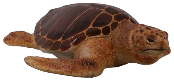 Loggerhead Sea Turtle Life Size Statue Prop - LM Treasures Life Size Statues & Prop Rental