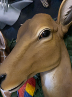 Antelope Head Life Size Statue - LM Treasures Life Size Statues & Prop Rental