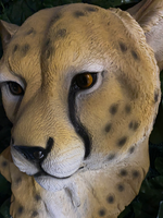 Cheetah Head Life Size Statue - LM Treasures Life Size Statues & Prop Rental
