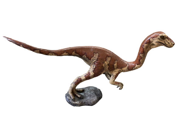 Baby Velociraptor Dinosaur Life Size Statue - LM Treasures Life Size Statues & Prop Rental