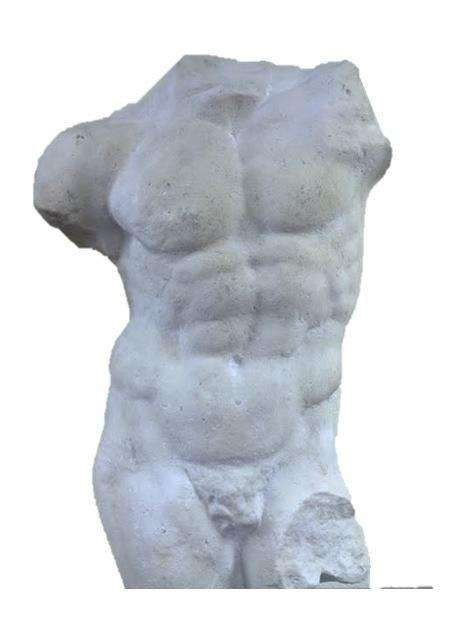 Andrea Male Torso - LM Treasures