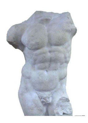 Stone Torso Andrea Male Greek Roman Prop Resin Decor - LM Treasures Life Size Statues & Prop Rental