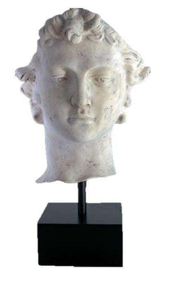 Stone David Head on Base Greek Roman Prop Resin Decor- LM Treasures