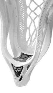 Warrior Evo Fatboy Warp Pro Head