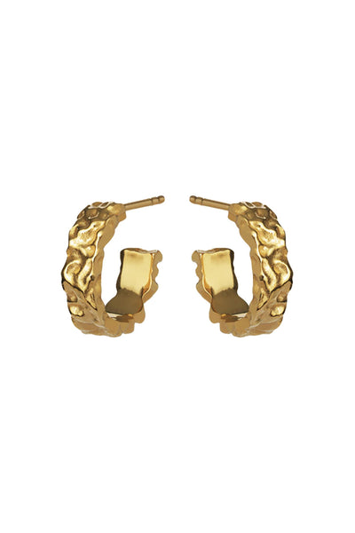 Aio Small Earrings Gold
