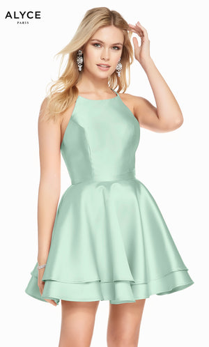Alyce Paris 1457 Dress