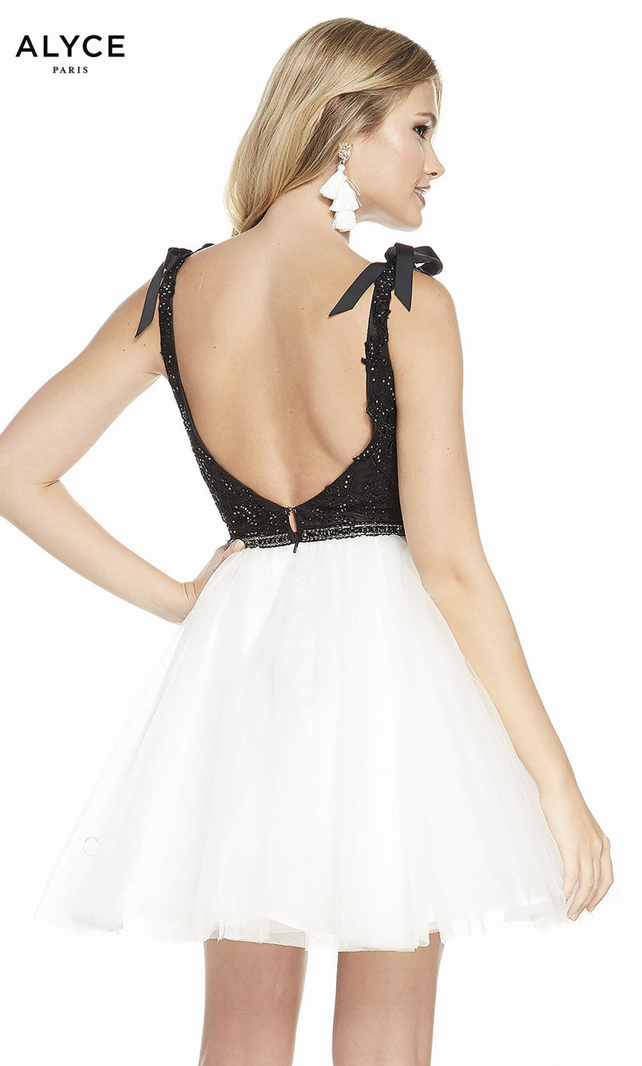 Alyce Paris 3843 prom dress images.  Alyce Paris 3843 is available in these colors: Black Ivory.