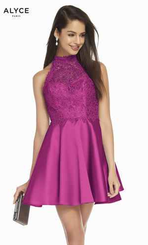 Alyce Paris 3847 prom dress images.  Alyce Paris 3847 is available in these colors: Raspberry, Midnight, French Blue, Rose Taupe.