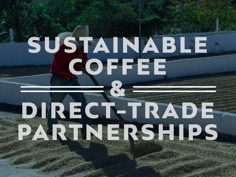 Sustainable Coffee & Direct Trade Partnerships