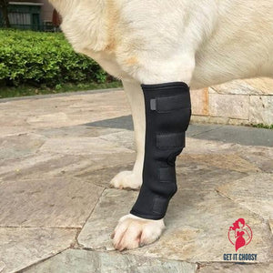 Dogs Injured Leg Protector Legguards Bandages by Getitchoosy