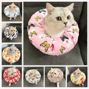 Cat Adjustable Recovery Cone by Getitchoosy