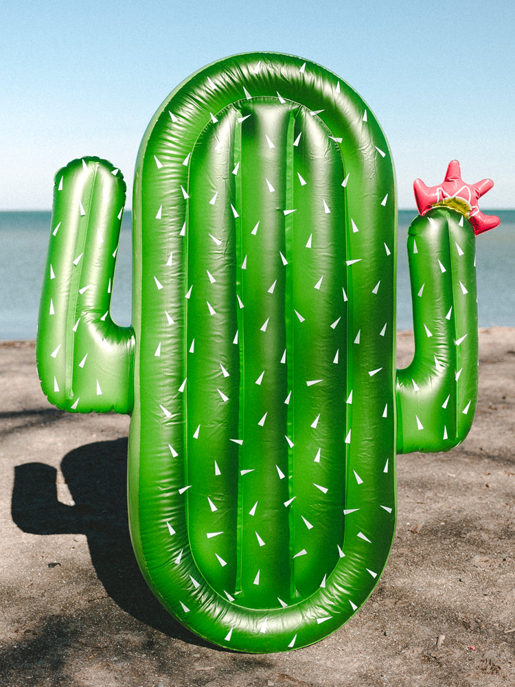 CACTUS INFLATABLE