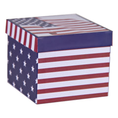 Stars and Stripes Giftboxed Mug