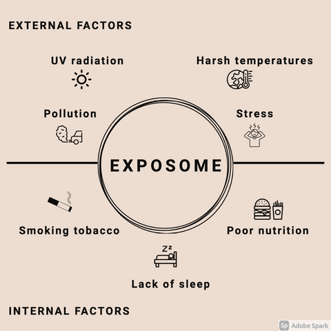 Skin exposome; why it's important and how can you stop premature ageing?