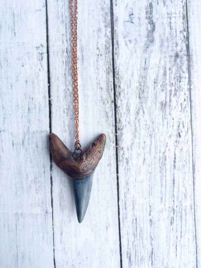 Hawkhouse Shark's Tooth Necklace