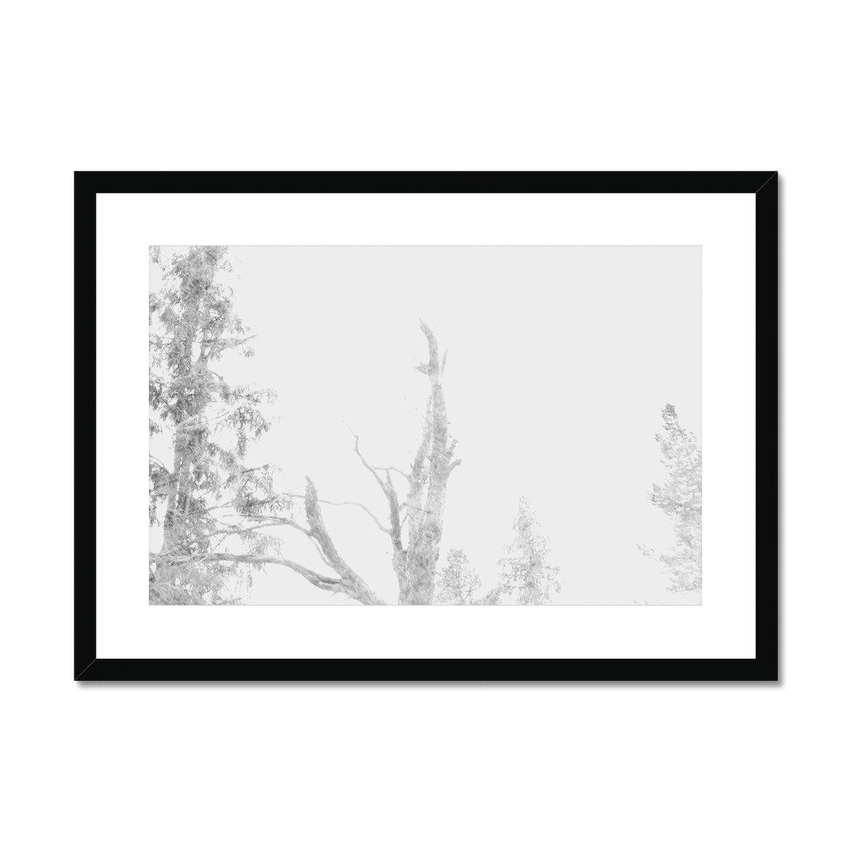 DREAM TREES - Print to Wall