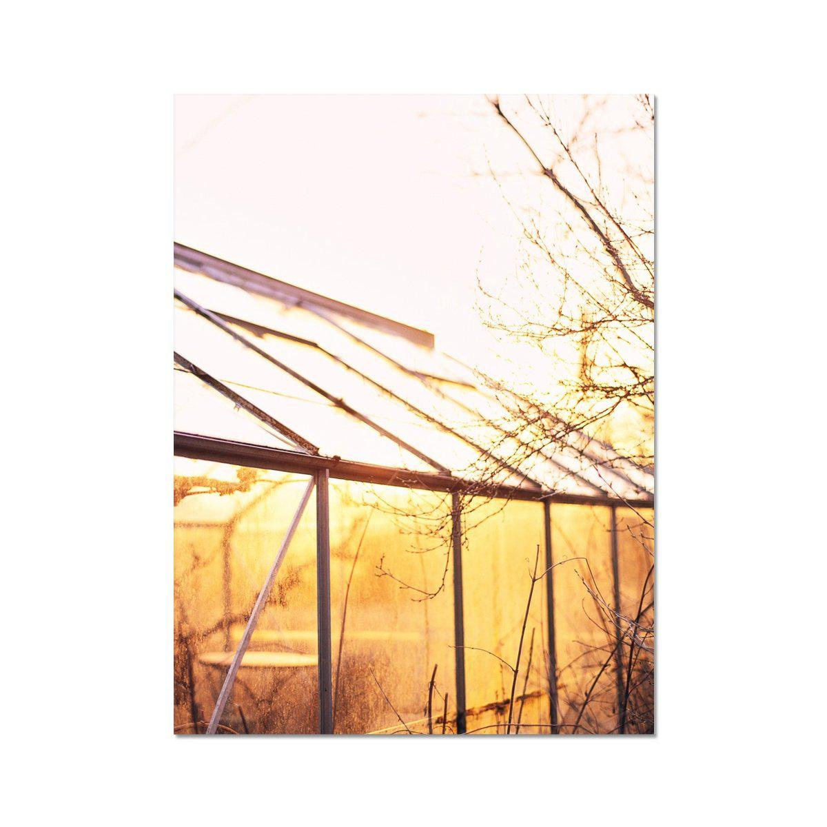 GLASS HOUSE - Print to Wall