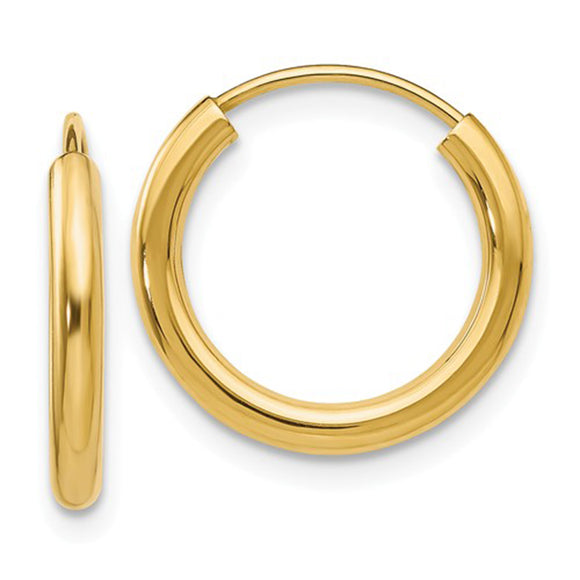 14k Yellow Gold Endless Hoop Earrings (2mm), All Sizes