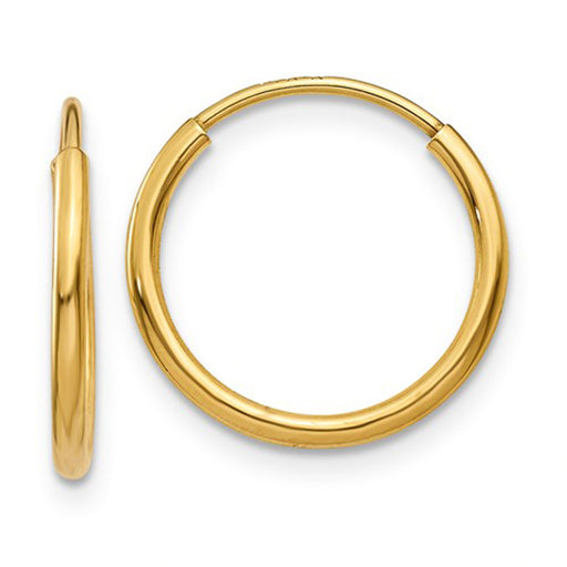 14k Yellow Gold Endless Hoop Earrings (1.25mm), All Sizes - LooptyHoops