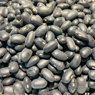 Organic Black Turtle Beans - 25 lb. Bag