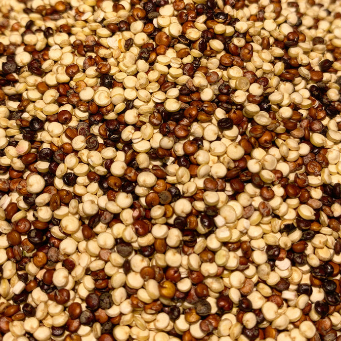 Quinoa - Rainbow 2 lb. Bag