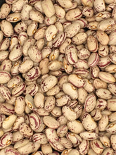 Load image into Gallery viewer, Cranberry Beans (Borlotti Beans) - 10 lb. Bag