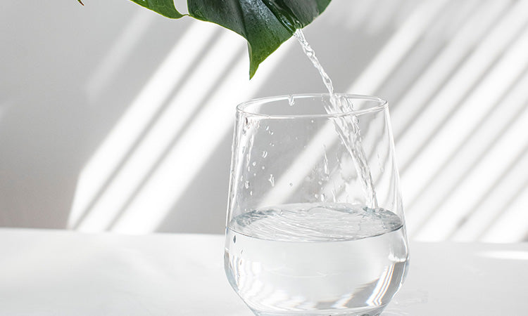 Water hydration
