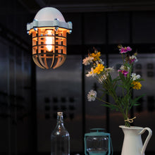 Printlamp Ceiling Light