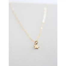 Load image into Gallery viewer, Petite Star Necklace