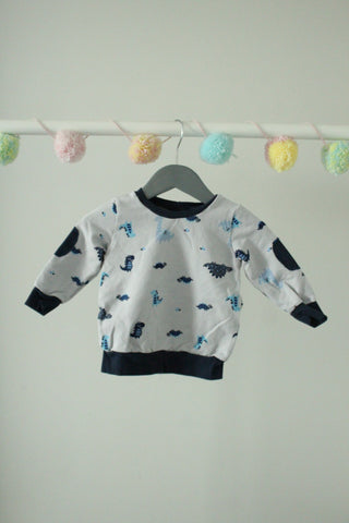 Dinosaur Sweater 3-6M